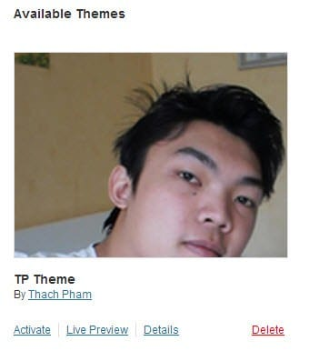 tu-thiet-ke-theme-wordpress-3