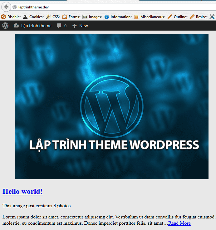 laptrinhtheme-finish-imageformat