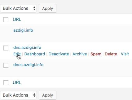 [Multisite] Sử dụng domain riêng cho website con 204